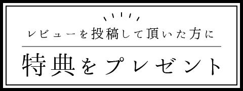 レビューキャンペーンバナー2(小)